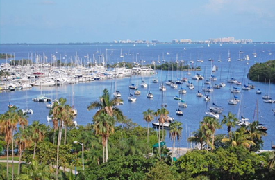 Coconut Grove Luxury Real Estate